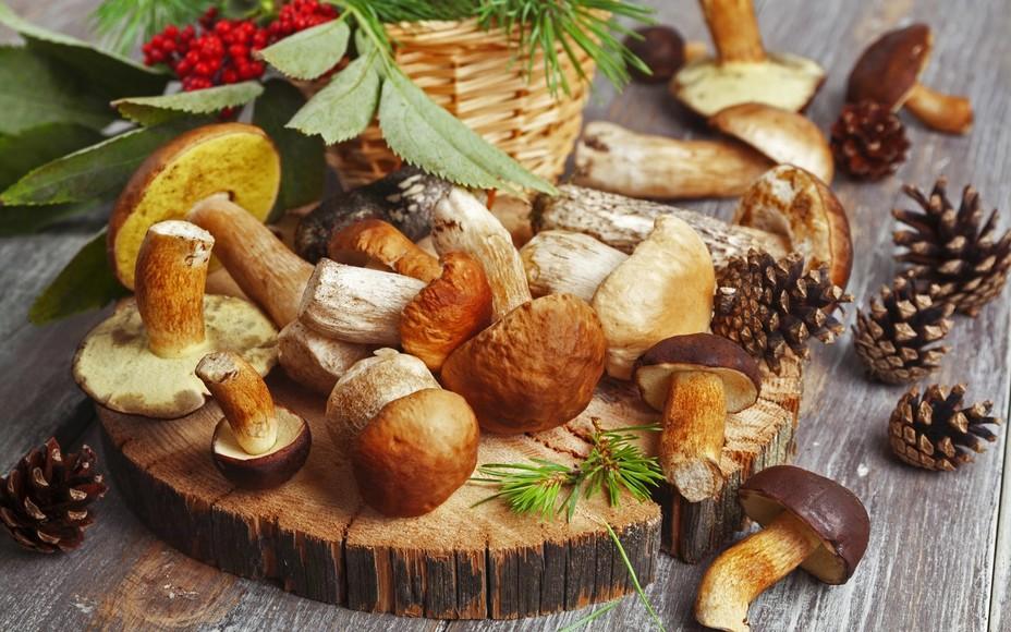 Картинки по запросу грибы для готовки