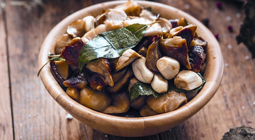 Как приготовить грибы синеножки на зиму