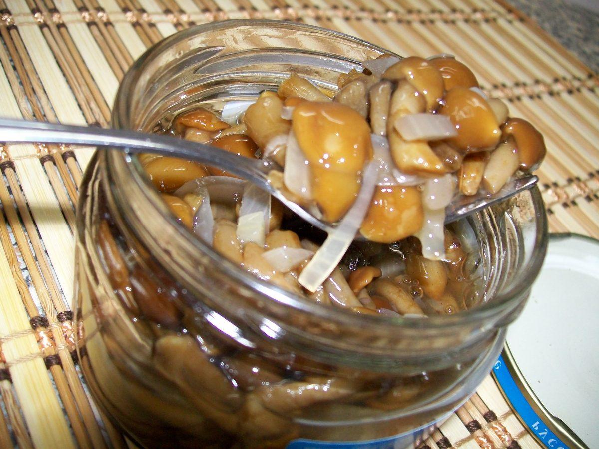 Опята на зиму рецепты с фото пошагово